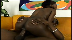 The ebony beauty wildly rides his long shaft and he pumps her twat deep from behind