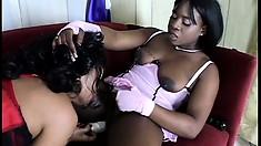 Insatiable black lesbians get into intense ass-to-ass fucking