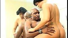 Mature housewife gets her chubby cunt pounded by a black cock