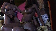 Three big breasted black lesbians drive each other's pussies to orgasm